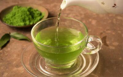 Ile razy dziennie można pić zieloną herbatę?
