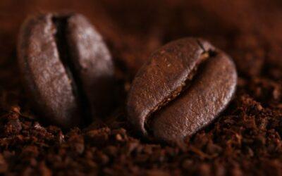 Jak przechowywać kawę?