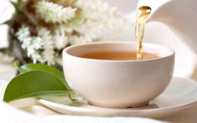 Czy biała herbata jest zdrowa?