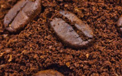 Historia kawy