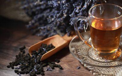 Jak parzyć czarną herbatę?